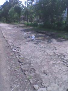 Jalan di Desa Sukamakmur